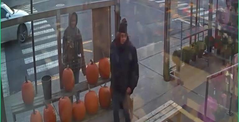 Veterans donation bucket stolen from Montreal West flower shop (VIDEO)