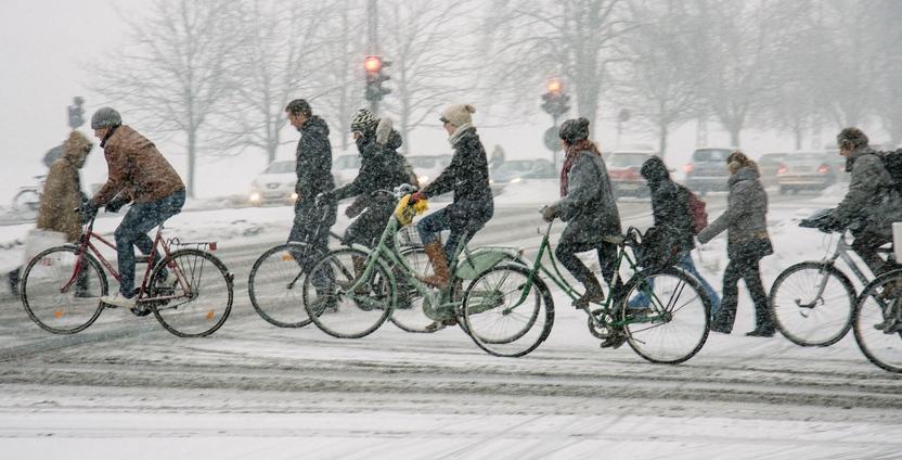 Montreal cyclists demand a new bike path along Sherbrooke Street