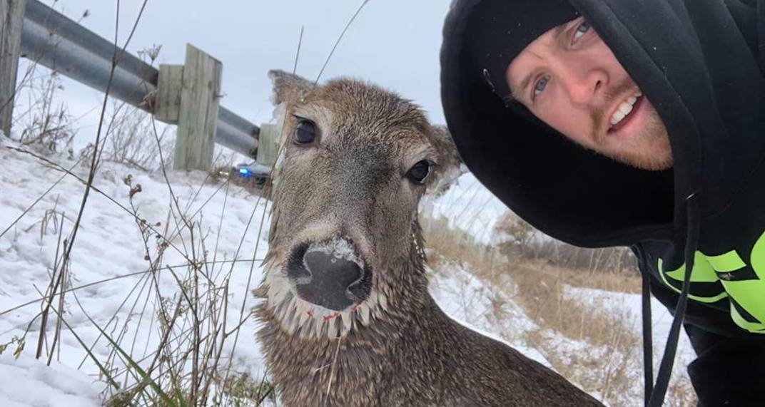 Couple praised after rescuing deer from icy river in Ontario (PHOTOS)