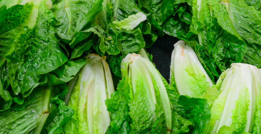 E. coli outbreak linked to romaine lettuce 'appears to be over' in Canada