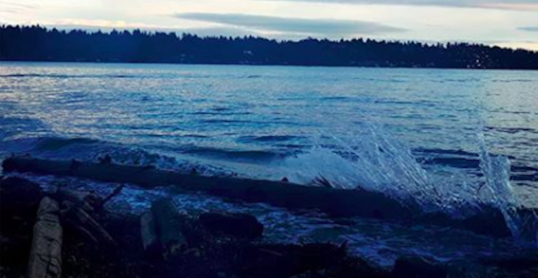 Body discovered in water off shores of Tsawwassen First Nation land