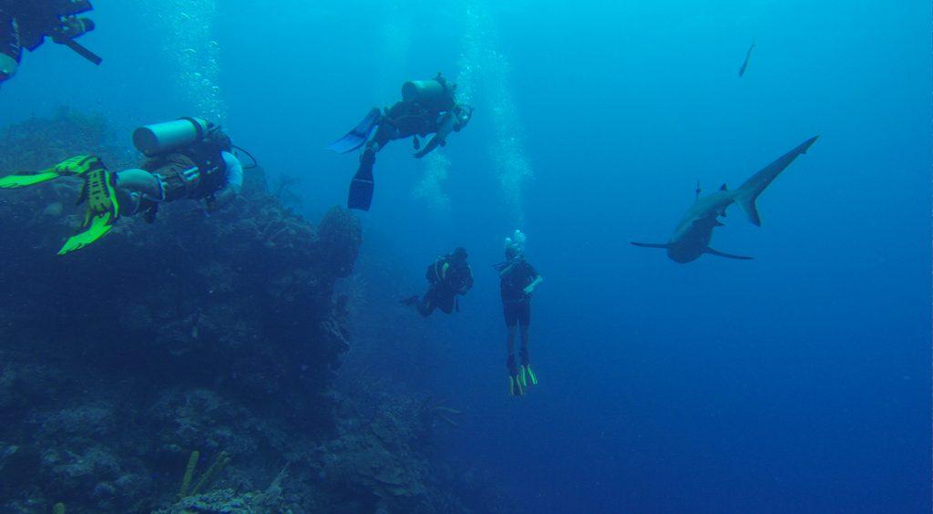 underwater sinkhole
