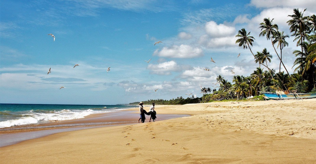 10 reasons why Sri Lanka is the hottest backpacking destination of the year