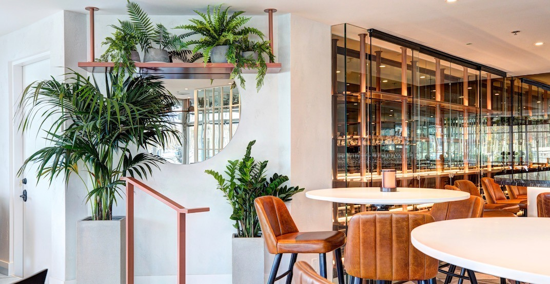 Vancouver's stunning new Mediterranean eatery opens next week (PHOTOS)