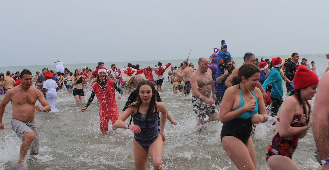 Canada's largest polar bear dip is coming to the GTA on New Year's Day