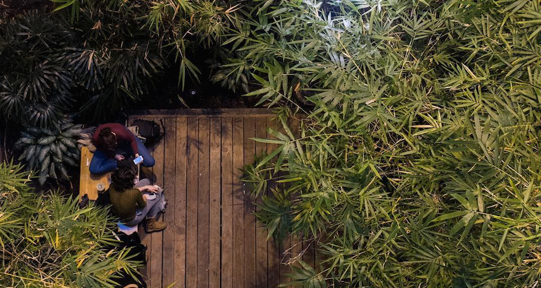 There's a secret bamboo study garden at U of T (PHOTOS)