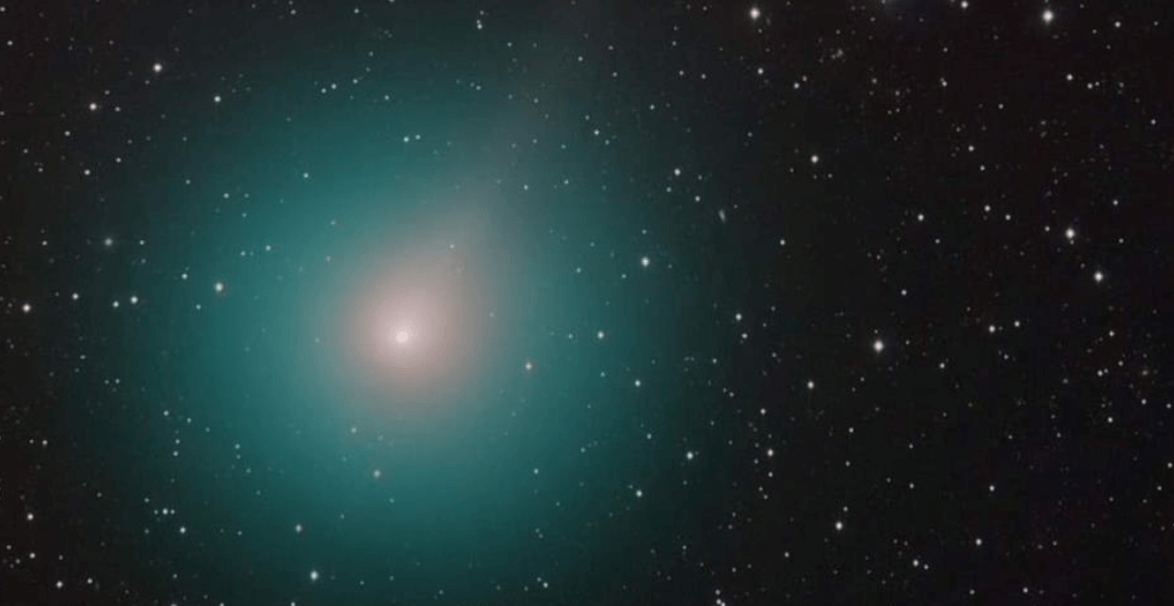 Here's how to see the brightest comet of the year tonight