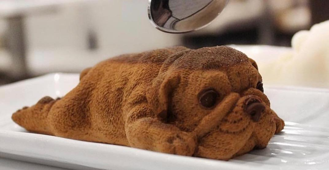 These realistic puppy desserts in Richmond are borderline disturbing