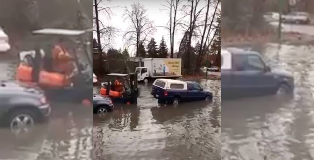 This is what the torrential flooding around Metro Vancouver has been like (VIDEOS)