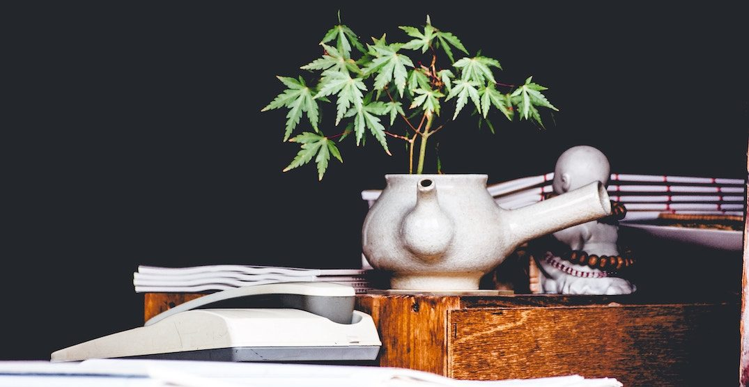 Can cannabis contribute to a healthy lifestyle?