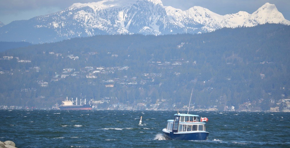 Wind warning in effect for Metro Vancouver with gusts up to 100 km/h