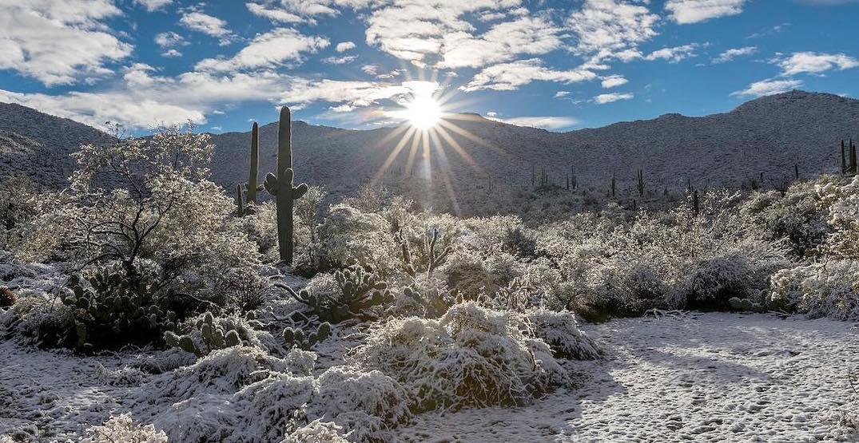 Rare snowfall makes Arizona desert and Grand Canyon look otherworldly (PHOTOS)