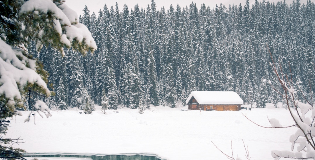 Winter storm blowing up to 75 cm of snow into Banff and Jasper