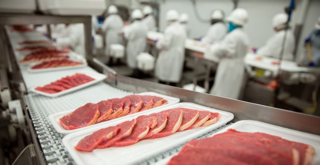 New regulations on food safety implemented across Canada today