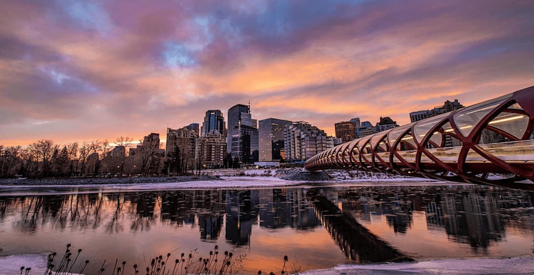14 things to do in Calgary while physical distancing this week