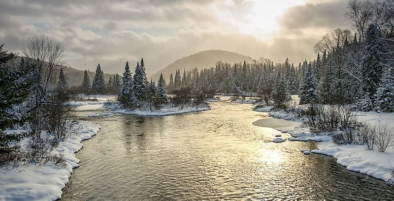 17 of Quebec's national parks are offering FREE admission January 26