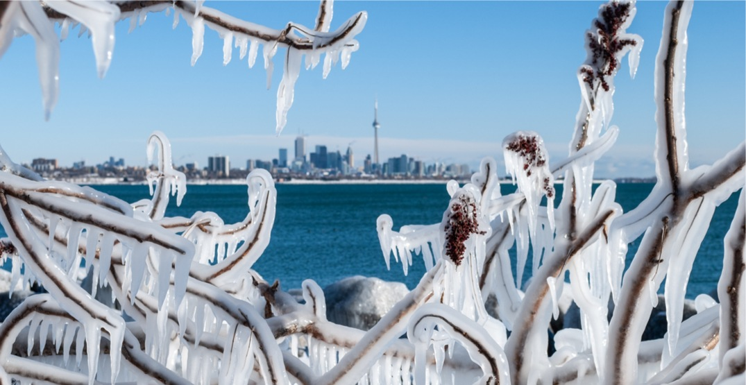 15 things to do in Toronto today: Sunday, February 17