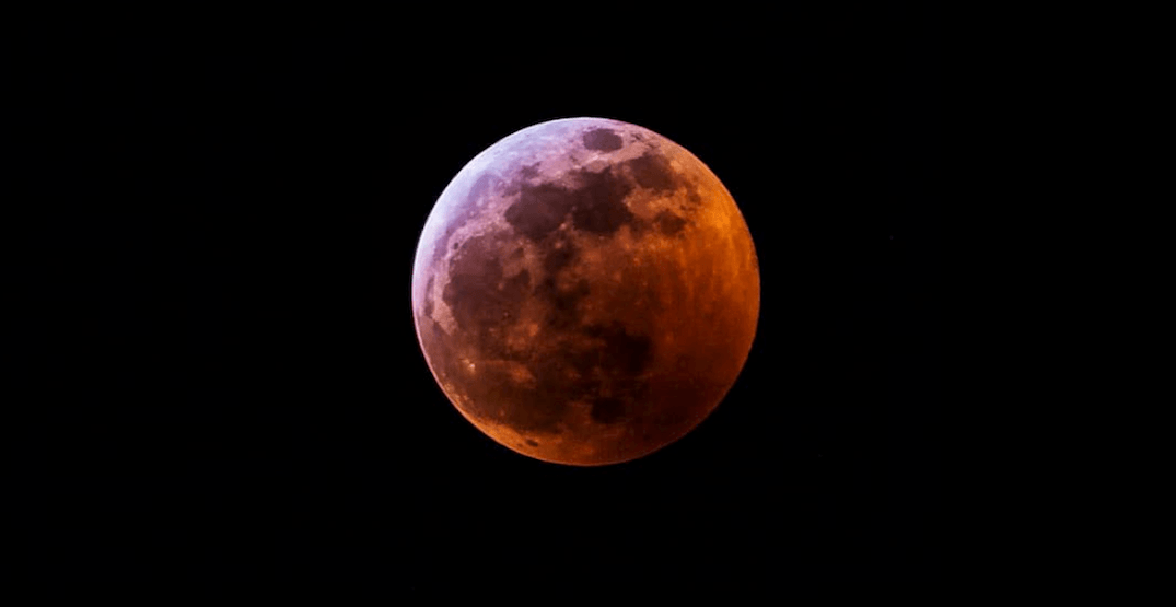 12 photos of the Super Blood Wolf Moon Total Lunar Eclipse over Calgary