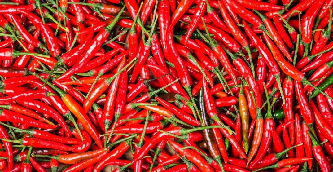 Canada Herb brand Red Chili recalled due to possible salmonella contamination