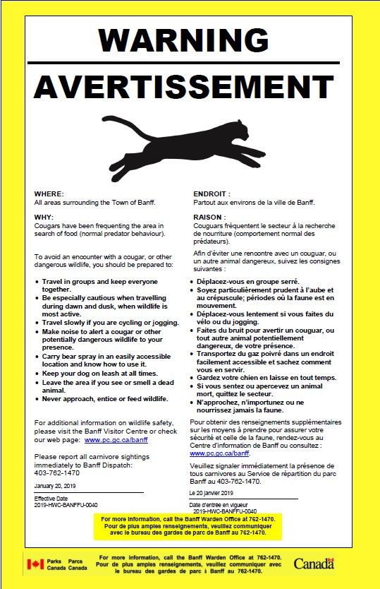 cougar warning