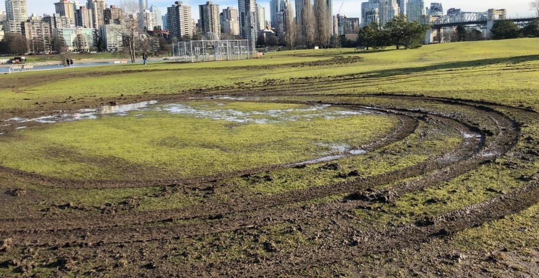 Vancouver Park Board searching for Vanier Park grass vandal