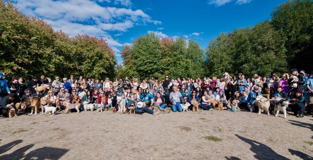 Vancouver dog meet-up