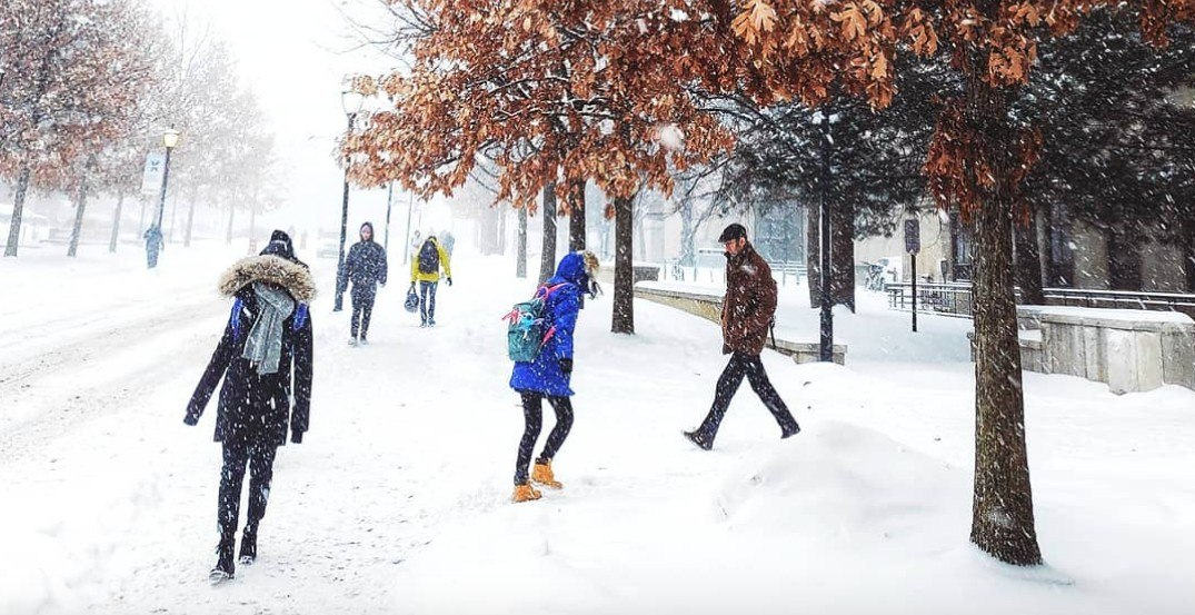 People are ripping U of T for cancelling classes way too late