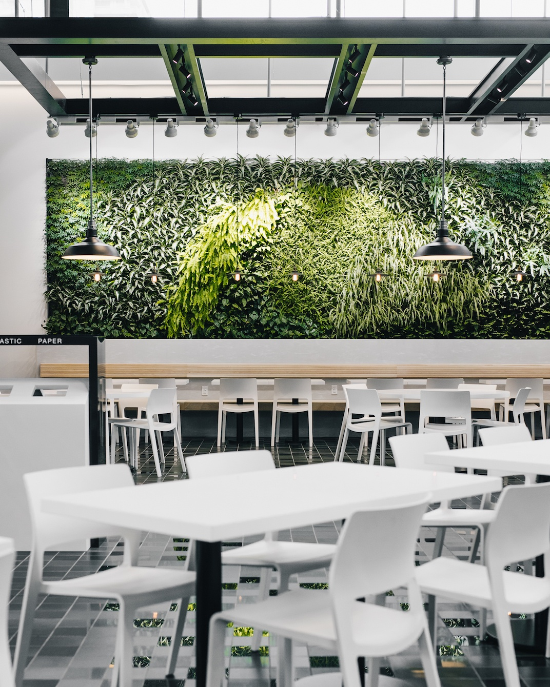 New Town Plaza Food Court In Hong Kong: Lougheed Town Centre's New Food Court Is Now Open (PHOTOS