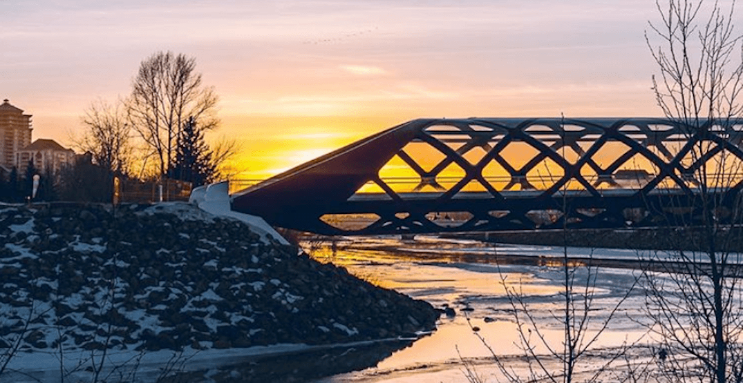 5 things to do in Calgary today: Tuesday, February 5