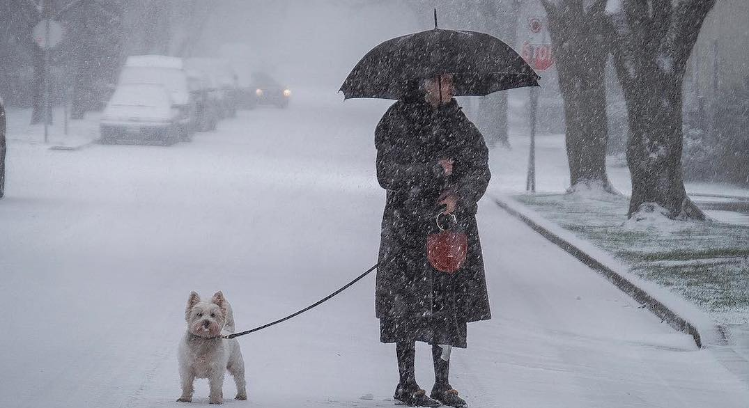 Can you tell which Canadian city these snowy photos were taken in?