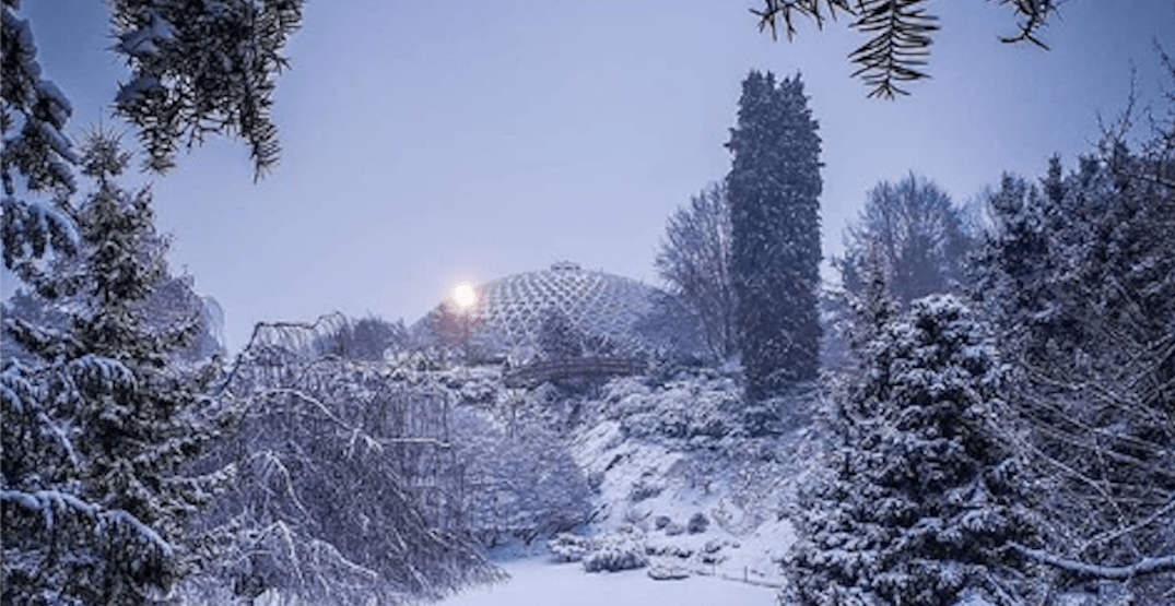 This is what Vancouver looks like after yesterday's snowstorm (PHOTOS)