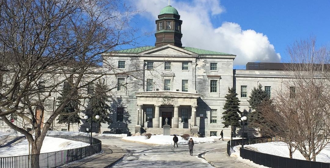 """2 Montreal universities rank among Canada's schools with most """"sugar babies"""""""