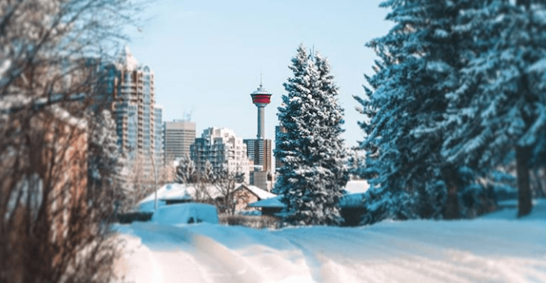 Here's what the City of Calgary is planning to do about the incoming snowfall