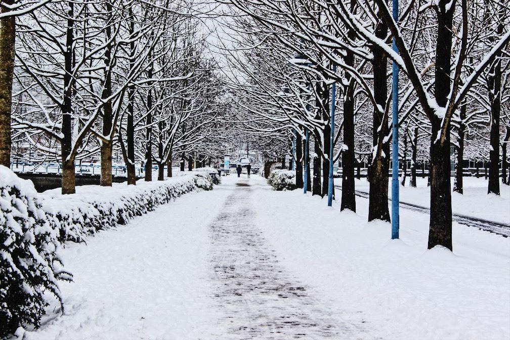 Snow in Vancouver / Manj Bains / Instagram: Canucksfan2016
