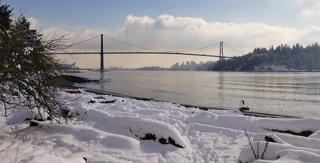 29 stunning photos of snow-covered beaches in Metro Vancouver