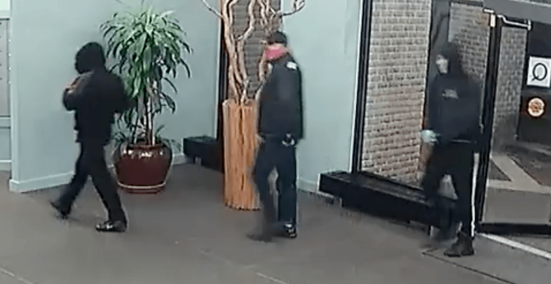 Security camera catches thieves stealing mail from North Vancouver building (VIDEO)