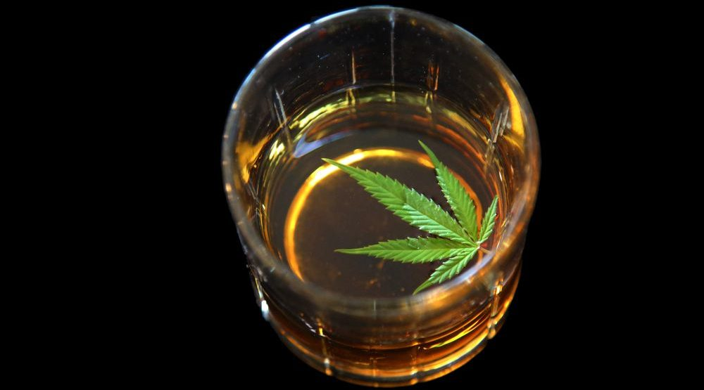 The alcohol industry may be the key to making drinkable cannabis taste good