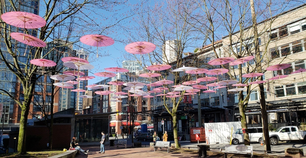 New cherry blossom-inspired umbrella art installed in Yaletown (PHOTOS) |  Urbanized