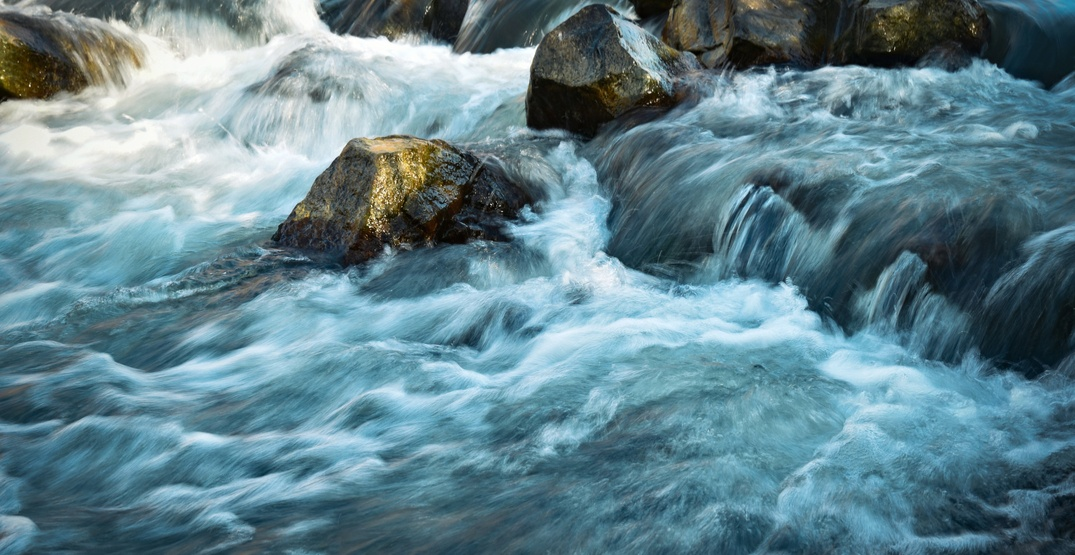 Young teen rescued while tubing in North Vancouver's Seymour River