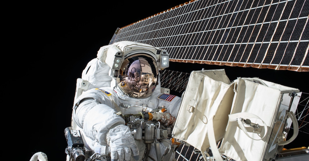 NASA cancels first all-female spacewalk because they don't have the right size suits