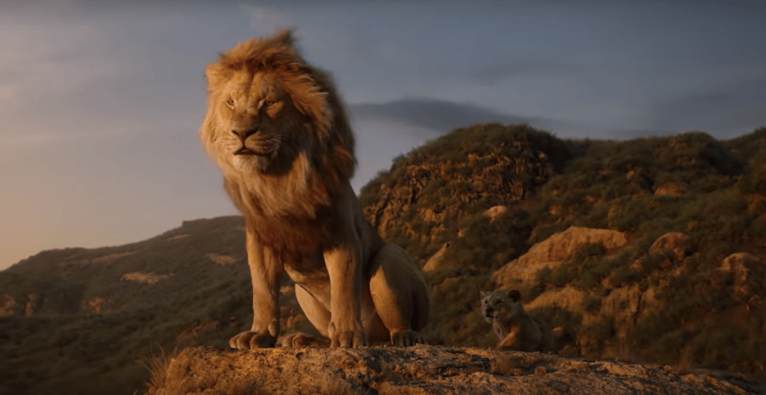 this brand new lion king trailer will make you feel all