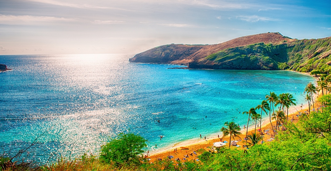 Thousands of Canadians took a trip to Hawaii over the holiday season