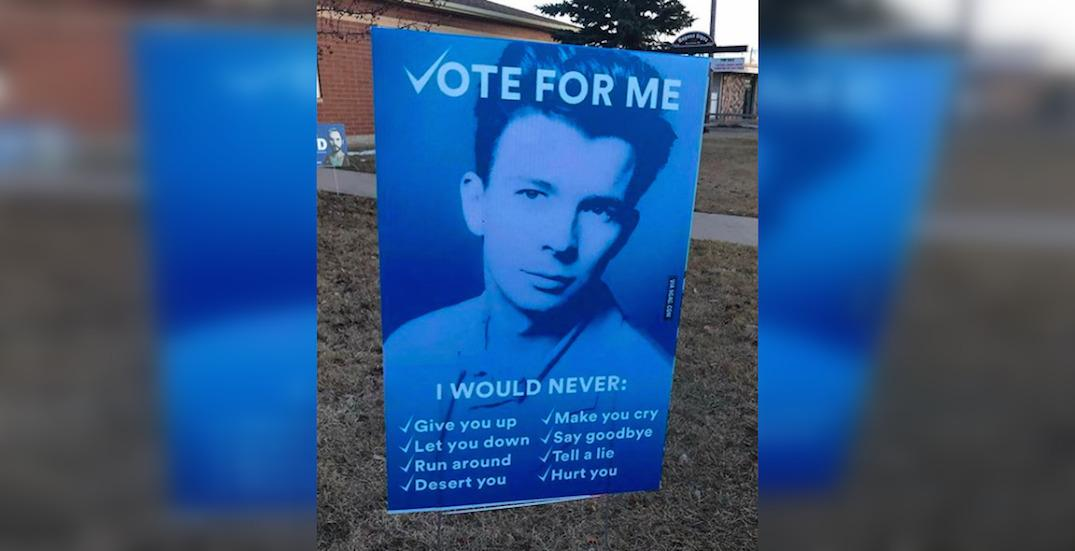 Here are the funniest 'political' yard signs we've seen around the province