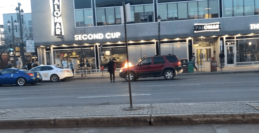 Alleged arsonist tackled by man in Hawaiian shirt in Edmonton (VIDEO)