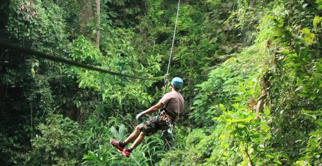 Image result for Canadian tourist dies in Thailand zip line accident