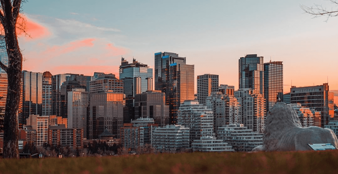 Calgarians not the happiest about their neighbourhoods: survey