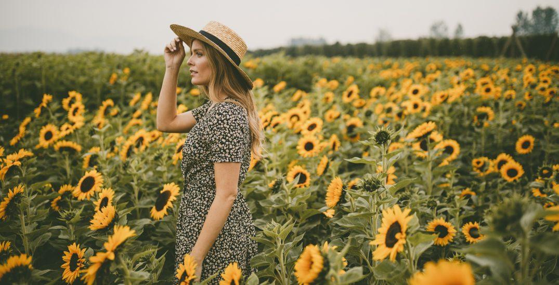Fraser Valley's stunning Chilliwack Sunflower Festival returns this July