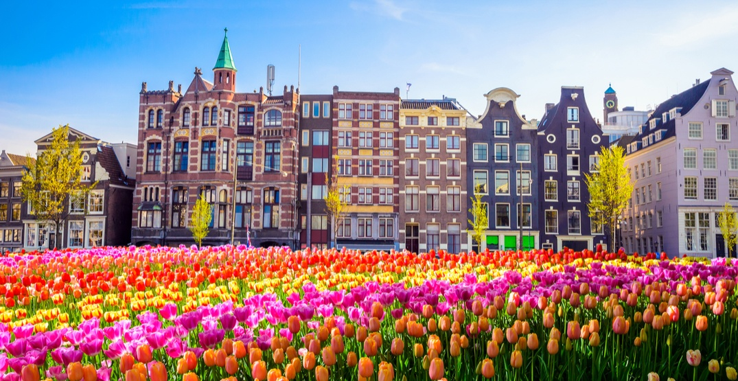 Dutch Tourism Board to stop promoting popular areas due to overtourism