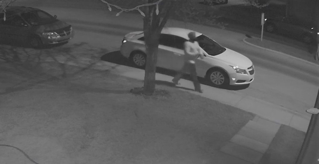 Calgary police want help identifying Good Samaritan who aided child