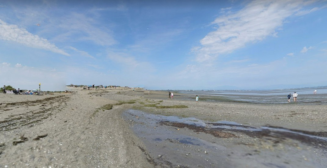 Rescue effort underway to save 2 beached whales at Delta's Boundary Bay